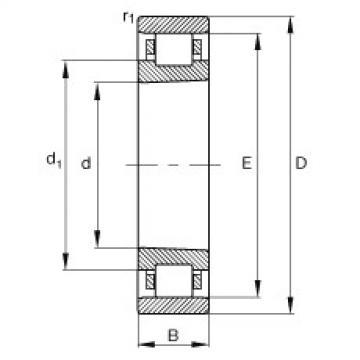 FAG محامل أسطوانية - N1096-K-M1-SP