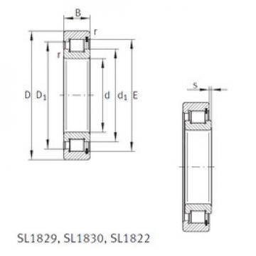 المحامل SL1818/500-E INA