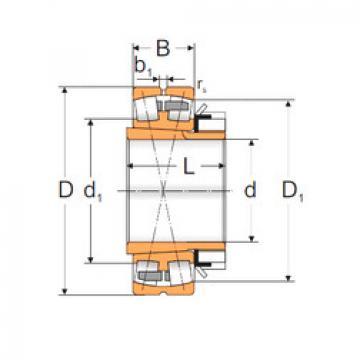المحامل 22234 ACKMBW33+H3134 MPZ