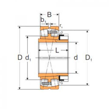 المحامل 22236 ACKMW33+H3136 MPZ