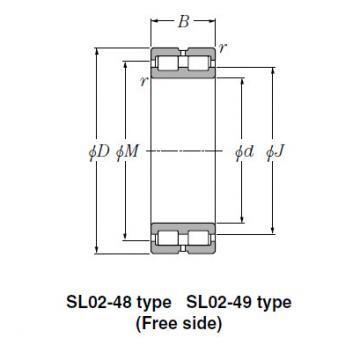 Bearing SL01-4848