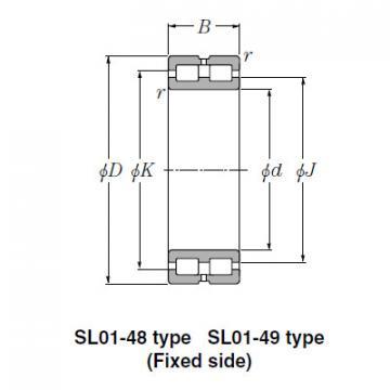Bearing SL02-4932