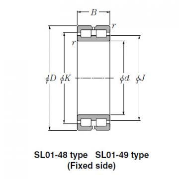 Bearing SL02-4944