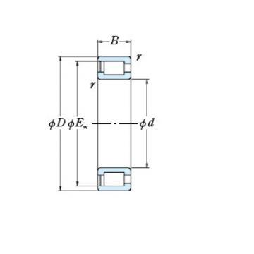 Bearing NCF18/800V