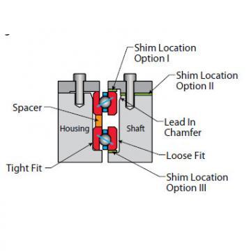 Bearing NF250CP0