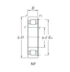 المحامل NF321 KOYO